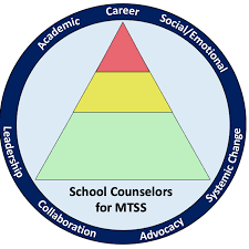 school counselors 4 mtss
