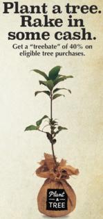 Tree Rebate Graphic