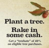 Tree Rebate