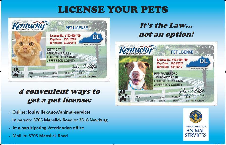 MAS license