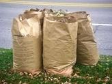 leaves bagged