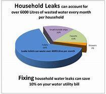Household Leaks Pie Chart