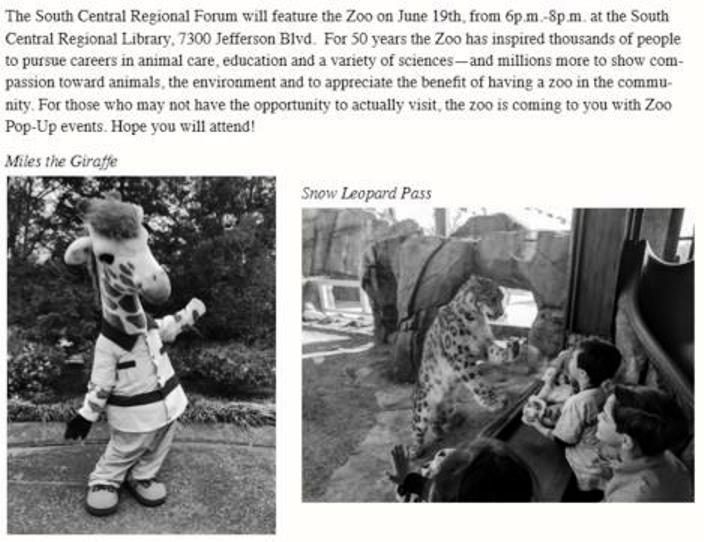 zoo 50th 2