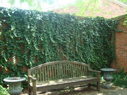 librarygarden