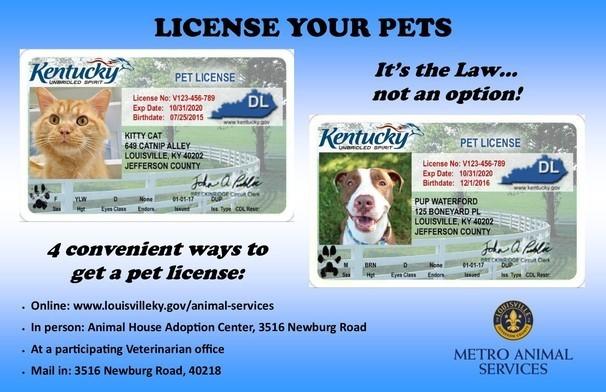 Pet License