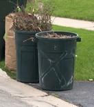 Yard Waste Pic