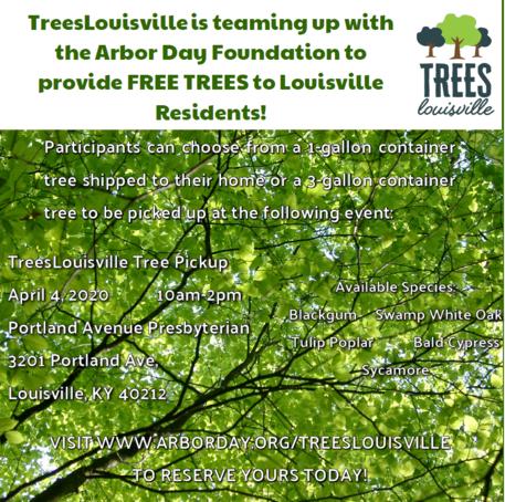 Trees Louisville