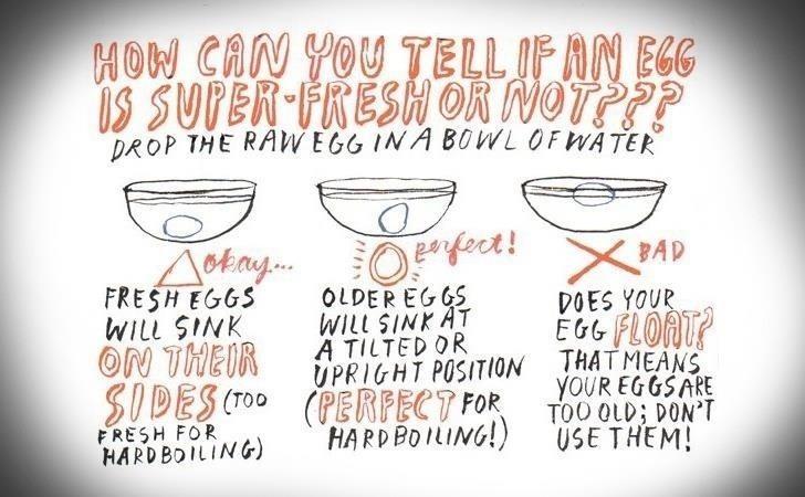 Eggs FYI