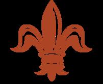CNO Fleur de Lis (orange)