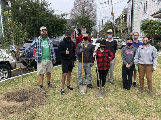 City Partners with SOUL to Plant More Trees