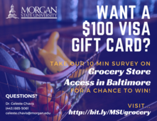 Survey - Morgan State