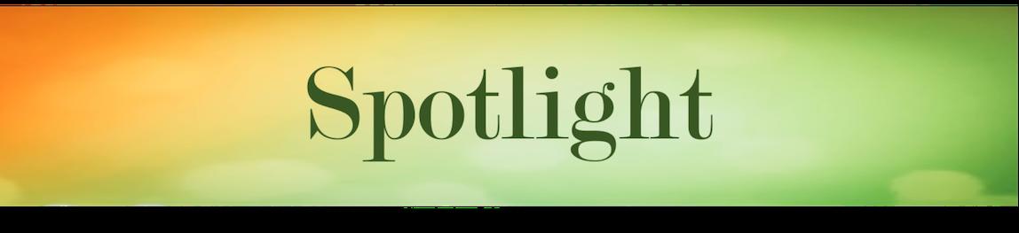 spotlight8