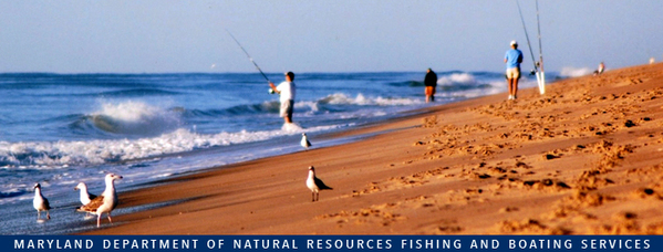 Photo of: People fishing on beach at Ocean City
