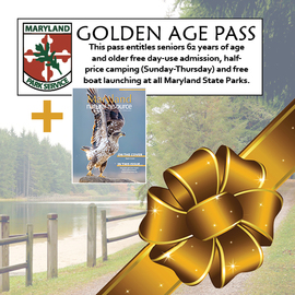 Photo of park pass and magazine cover with bow