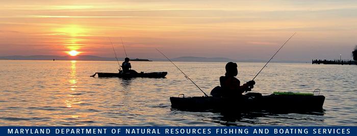 Banner showing kayakers fishing at sunset