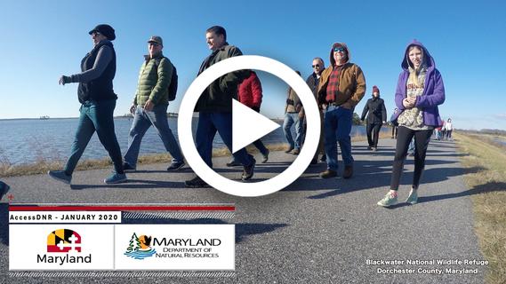 Video still showing people hiking at Blackwater National Wildlife Refuge