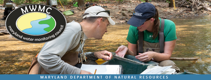 Photo of two scientists recording data in stream
