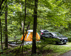 Photo of campsite with tent at New Germany State Park