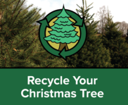 Treecycling banner