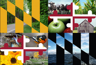 Maryland Flag w/ images