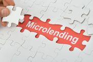 Microenterprise Loan Puzzle