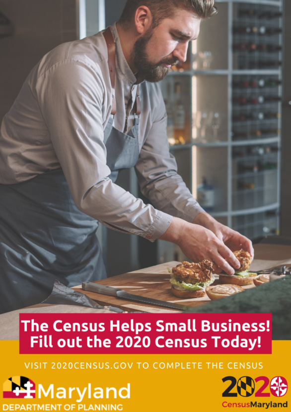 Census-Small-Business