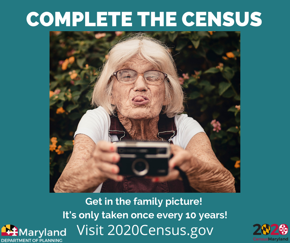 Get-In-The-Picture-Census