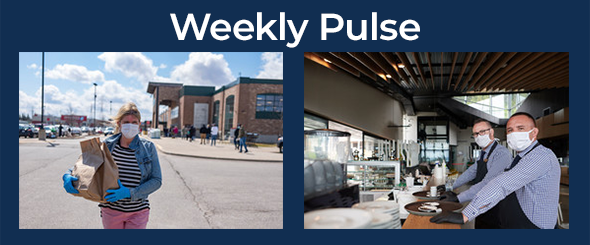 Weekly Pulse: Household and Small Business Pulse Survey Updates