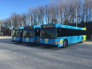 newrideonbuses