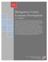 economic development 2016