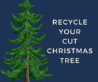 Christmas Tree with Recycle your Christmas Tree