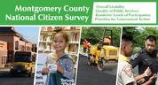 livability survey