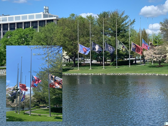 County Flags Fly at Half-Staff