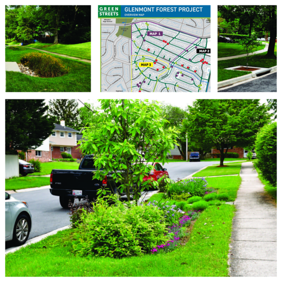 glenmont forest green streets stormwater familities