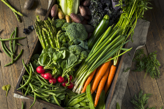 local gardening food