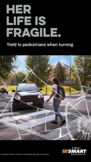 SSyieldtopeds safety