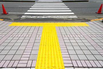 Improved Transportation Navigation and Safety for People with Vision Loss and Disabilities