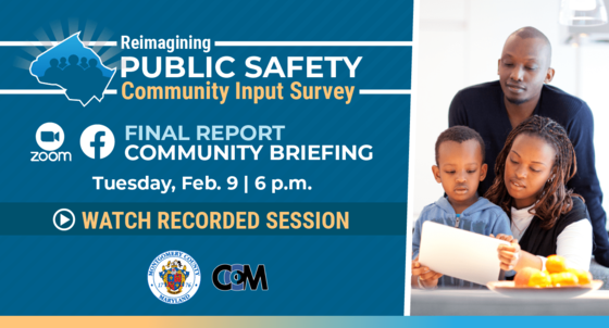 public safety task force