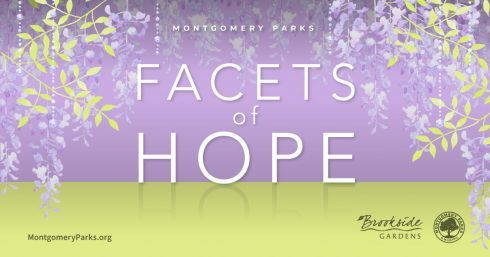 facets of hope
