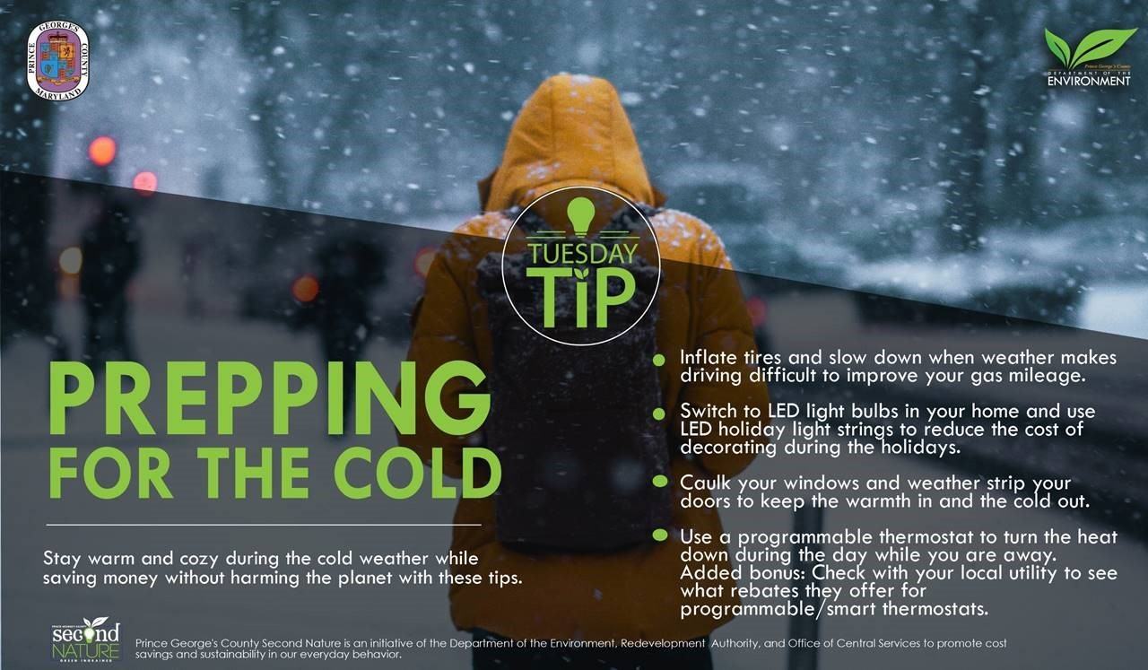 Tues Tip 11.27.18 Cold Prep