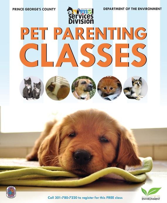 Pet parenting class 2019