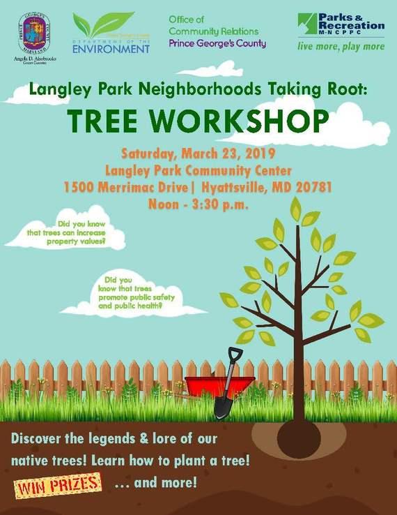 Langley Park Tree Workshop 03.2019