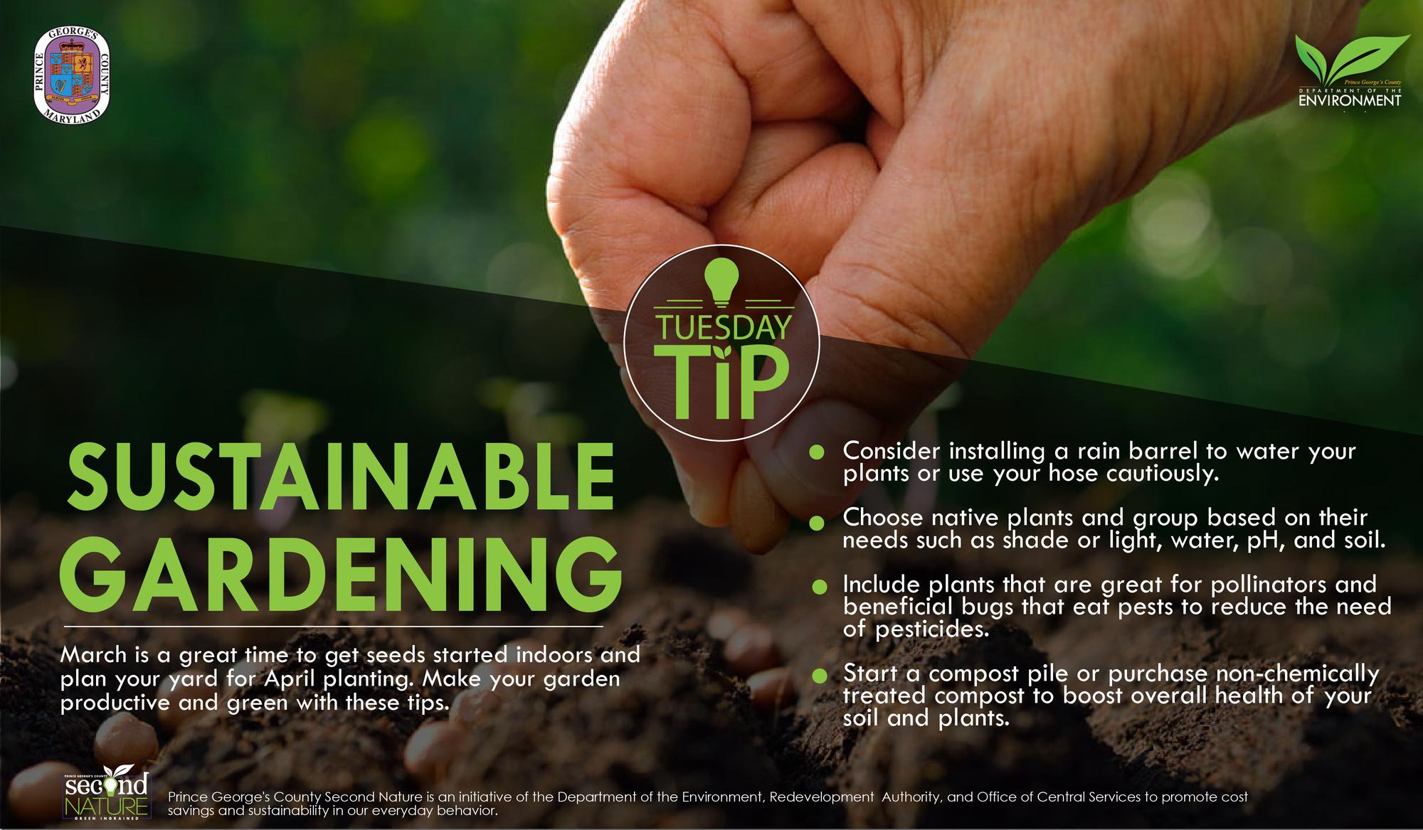 Tues Tip 3.5.19 gardening
