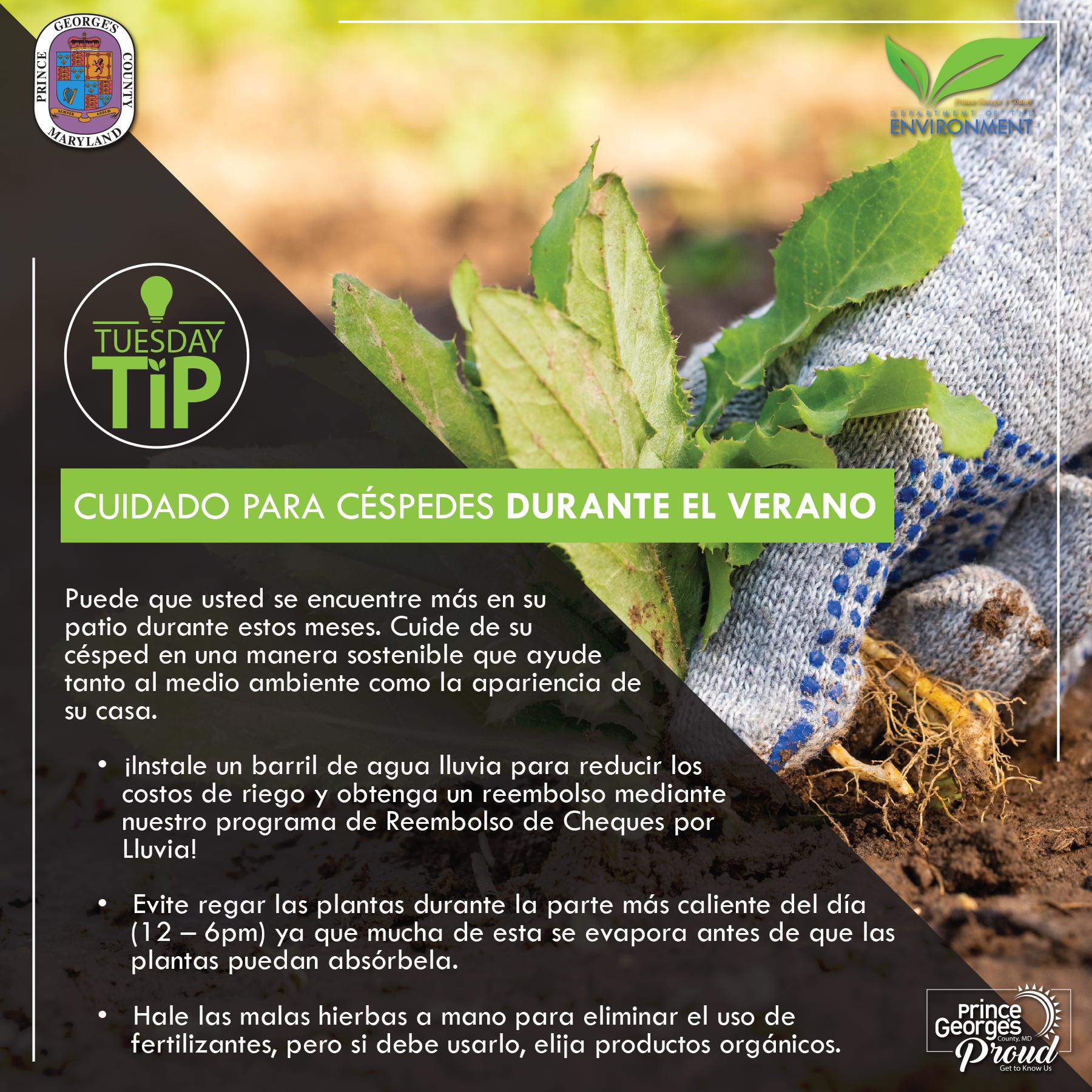 Tues Tip 8.18.20 LawnCare sp