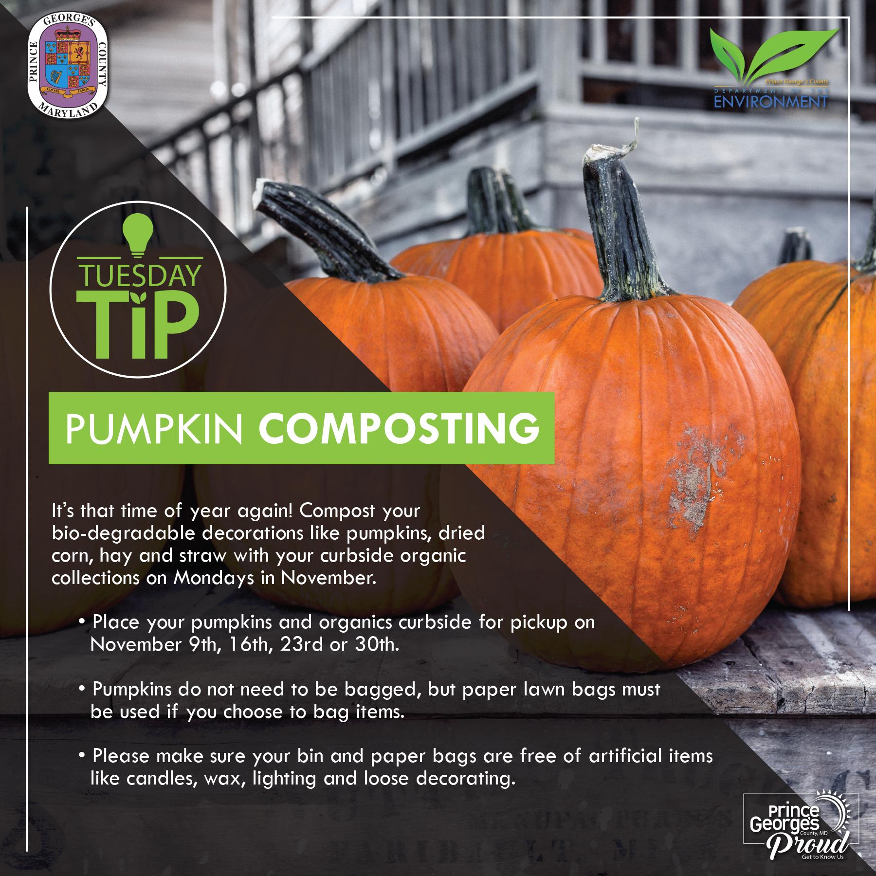 Tues Tip 11.3.20 Pumpkin Composting eng