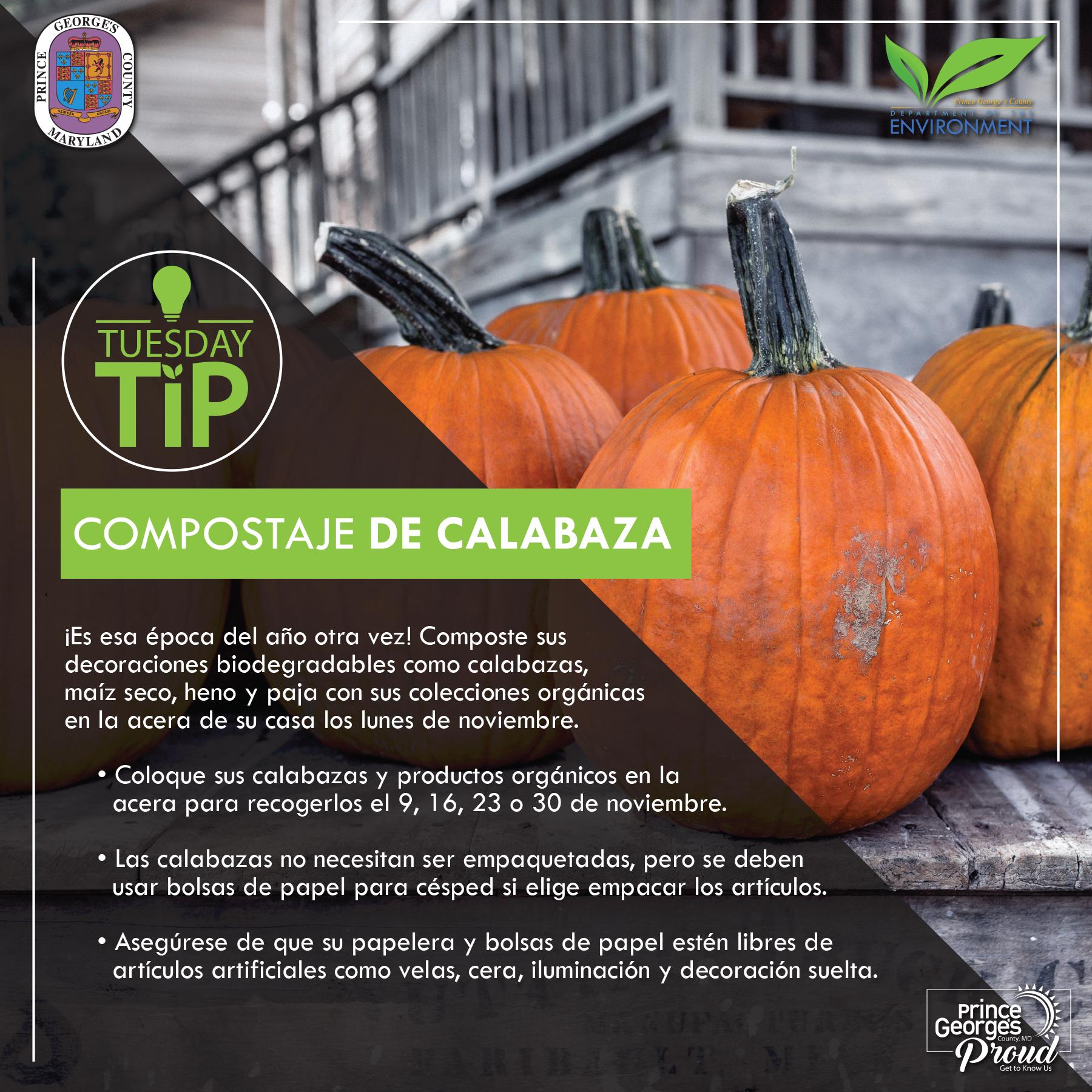 Tues Tip 11.3.20 Pumpkin Composting sp