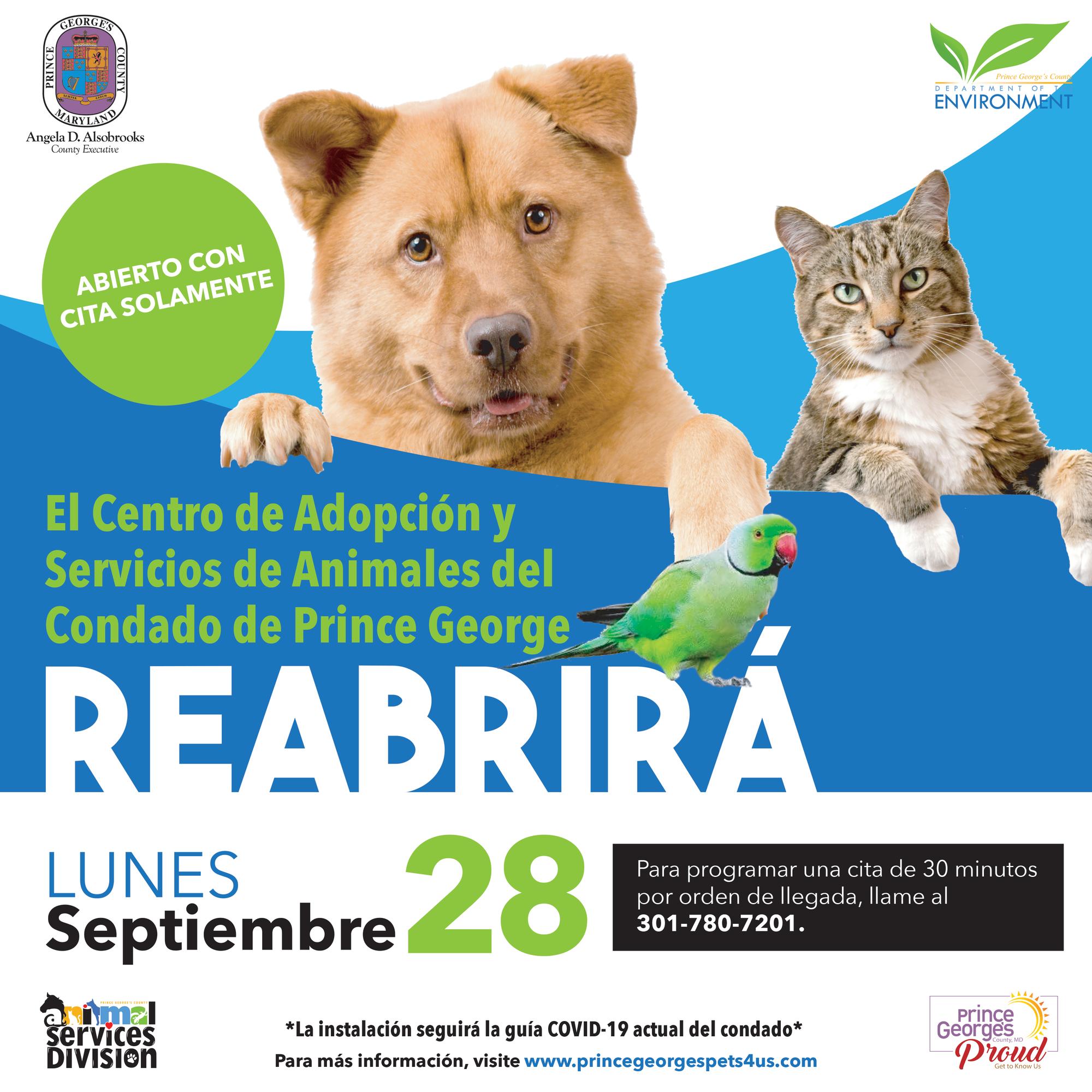 Animal Shelter ReopensSpanish