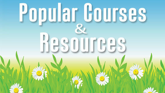 Popular Courses and Resources