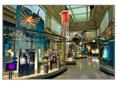 image Smithsonian