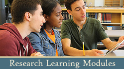 Lesson modules